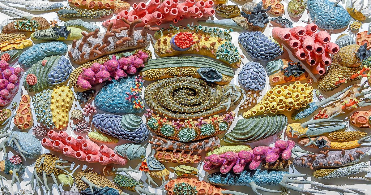 Hundreds of Ceramic Marine Creatures Radiate in Gradients to Show the Effects of Coral Bleaching